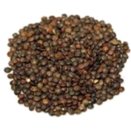Photo of Organic Puy Lentils