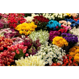 Photo of Flowers 17.99