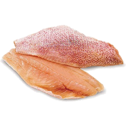 Photo of Rainforest Red Snapper Fillet