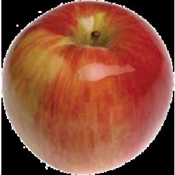 Photo of Apples Jonathon Kg
