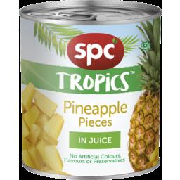 Photo of Spc Tropics Pineapple Pieces In Juice 432g