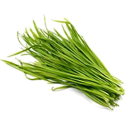 Photo of Herbs Onion Chives