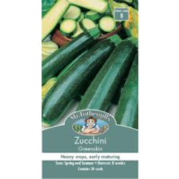 Photo of Zucchini Greenskin