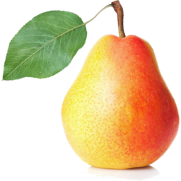 Photo of Pears Comice