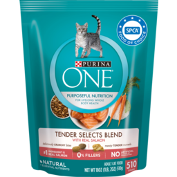 Photo of Purina One Dry Cat Food Salmon & Tuna 510g