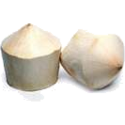Photo of Coconut Drinking Each