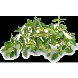 Photo of Fresh Lemon Thyme