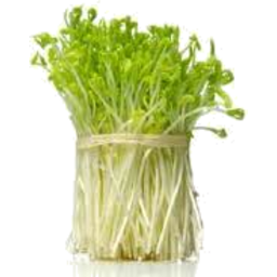 Photo of Sprouts Snowpea P/P 100gm