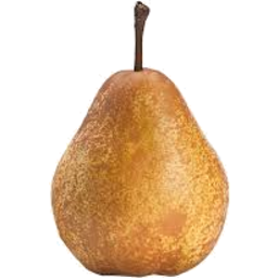 Photo of Pears Angely