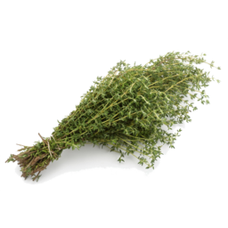 Photo of Herb - Thyme