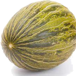 Photo of Frog Skin Melon