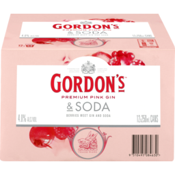 Photo of Gordon's Pink Gin & Soda 12pack cans