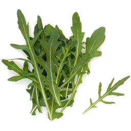 Photo of Herbs - Rocket (Bunch)