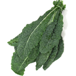 Photo of Kale Cavolo Nero (Tuscan Kale)