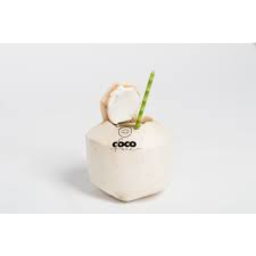 Photo of Coconut Young Drinking