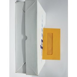 Photo of #8 G/Kraft Envelope