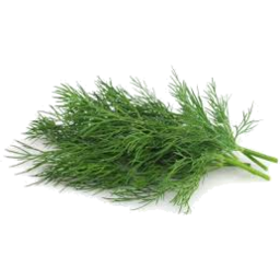 Photo of Thymebank Dill 10g