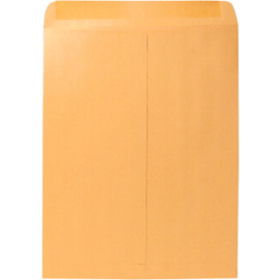 Photo of Brown Envelope 12 X 15 1/2