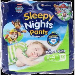 Photo of Babylove Sleepy Nights Pants 2-4 Years 12-18kg 12 Pack