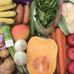 Photo of Seasonal Organic Shop Box