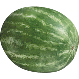Photo of Melon Seedless Whole L
