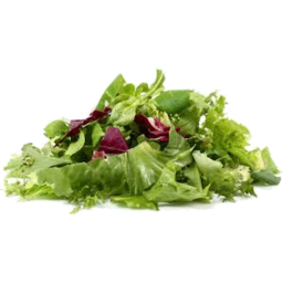 Photo of Lettuce Mix - Biodynamic Green Pkt 200g