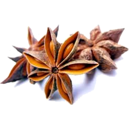 Photo of Gourmet Spices - Aniseed Star