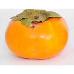 Photo of Fuji Fruit Quality