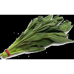 Photo of Herb - Sage