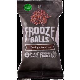 Photo of Frooze Balls Gluten Free Fudgetastic 5 Pack