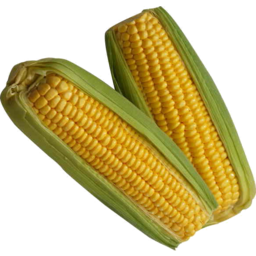 Photo of Sweet Corn On The Cob