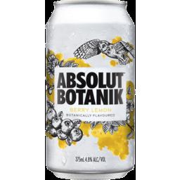 Photo of Absolut Botanik Berry And Lemon Can 24 X 375ml