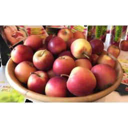 Photo of Apples Rockit