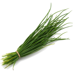 Photo of Herb - Chives - Onion