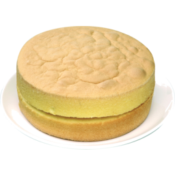 Photo of Sponge Double Plain Round