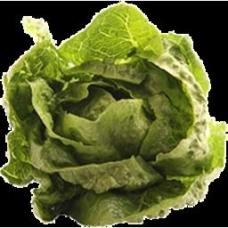 Photo of Lettuce Organic