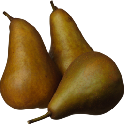 Photo of Beurre Bosc Pears