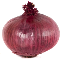 Photo of Onions - Spanish (medium)