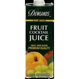 Photo of Dewlands Fruit Cocktail Juice 1l