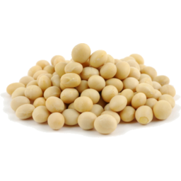 Photo of Soya Beans