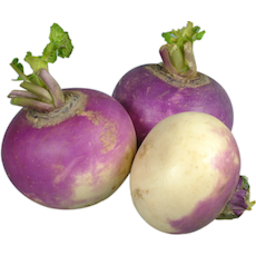 Photo of Turnip