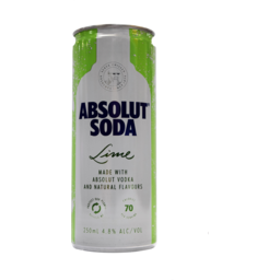 Photo of Absolut Lime & Soda Can