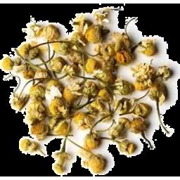 Photo of Chamomile Flowers