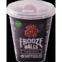 Photo of Frooze Balls Gluten Free Fudgetastic Pottle 224g