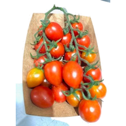 Photo of Tomatoes Roma Truss Tray