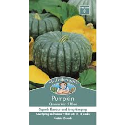 Photo of Pumpkin Queensland Blue