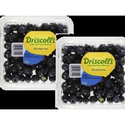 Photo of Blueberries **2 Punnet** Spec
