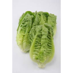 Photo of Lettuce Cos 2 Pack