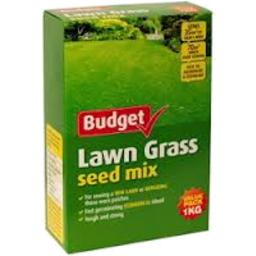 Photo of Budget Lawn Seed 1kg