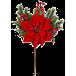 Photo of Poinsettia Pick